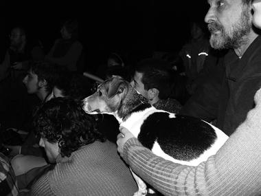 Постоянным зрителем была собака В.Кокорина. Оназасыпала,когдастановилось скучно, илаяла, если насцене кого-то обижали