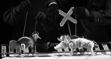 Курица Кето и свинья Виктор. Фото М. Гутермана