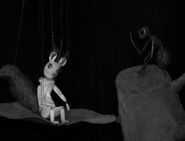 Белка и Муравей. Фото из архива редакции