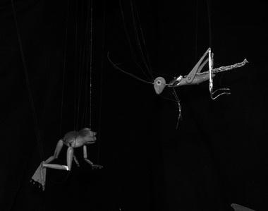 Лягушка и Кузнечик. Фото из архива редакции