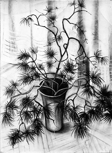 Букет. Рисунок Н. Ивановой. 1973 г.