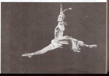 В. Михайловский. «Лебедь». Фото В. Зензинова
